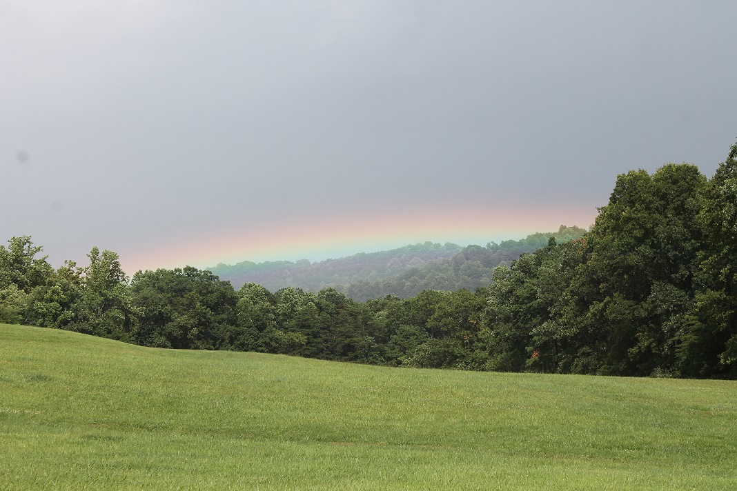 rainbow-above-winery-in-nelson-county