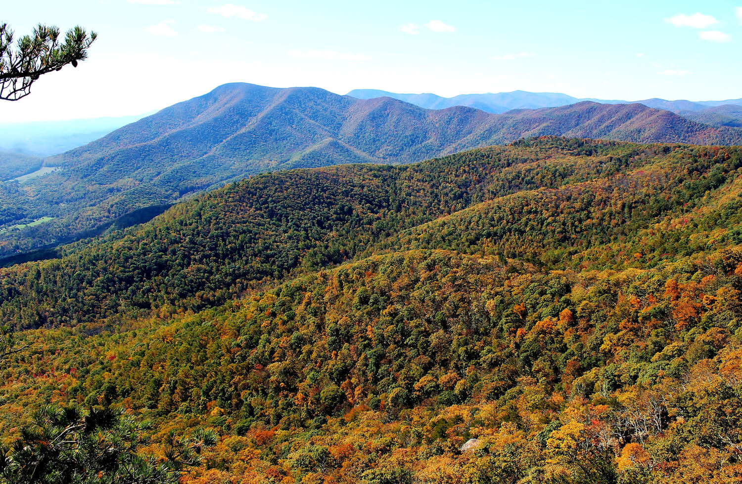 The sun shines on the beautiful orange, red green and yellow fall foliage of the mountains